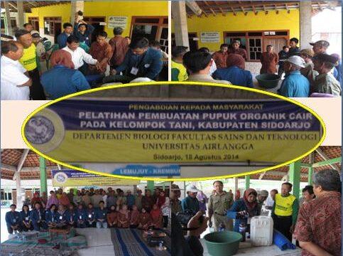Community Service 2014 in Sidoarjo Regency