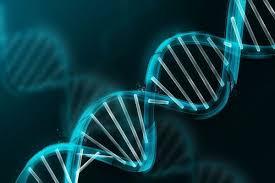 Apa yang membuat kita unik tidak hanya gen-gen kita